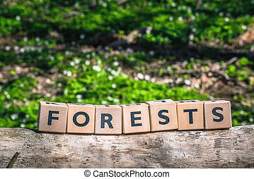 Forest sign made of wooden cubes