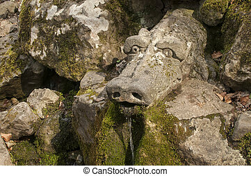 Forest spring with dragon's head