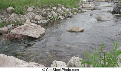 forest stream flows against the background of Electric...