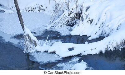 forest stream in winter nature snow grass and tree beautiful...