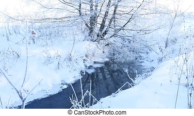 forest stream in winter snow grass and trees beautiful...