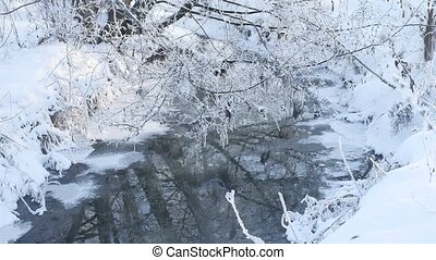 forest stream in winter snow grass and tree nature beautiful...