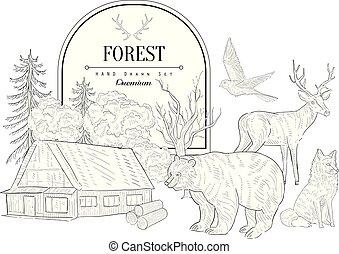 Forest Themed Vintage Sketch