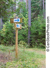 Forest trail signpost with pointing arrows