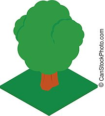 Forest tree icon, isometric style