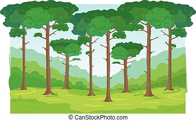forest trees background - Green tall trees on a glade....