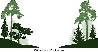 Forest trees set vector silhouette. Wood isolated on white background. Trees in the park pass through the road or river
