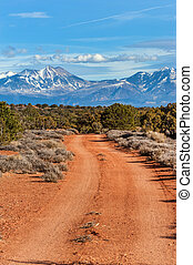 Forest unpaved road