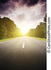forest., verde, camino de asfalto
