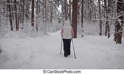 Forest view of the woman's back, which is engaged in Sport step. She between the tall trees, somewhere in the dense . Possibly near the hares run. dressed in warm sportswear.