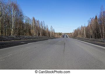 forest., voyage, asphaltez route, beau