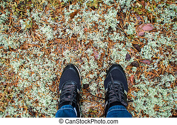Forest walk in autumn. Feet in sneakers on background of mossy ground