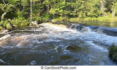 Forest Waterfall in a deciduous forest. With sound. High definition. Location: Kejimkujik National Park, Nova Scotia, Canada