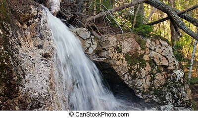 Forest Waterfall panorama