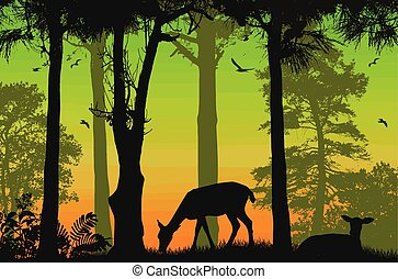 Forest wildlife poster. Deers silhouettes on beautiful sunset