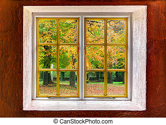 Forest with autumn colors seen through a window