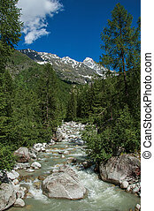 Forest with glacier creek and snowy mountains and blue sky in Argentiere.
