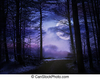 Forest With Moon