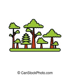 forest with trees scene