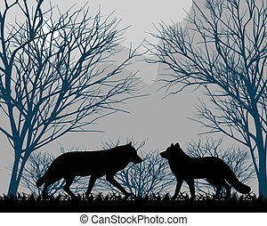 Forest wolves - Two wolves in forest in the moonlight