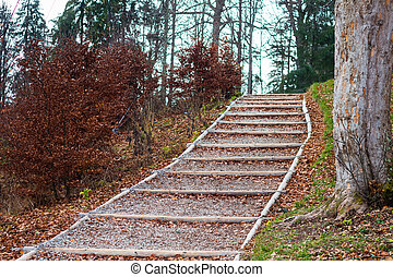 Forest wooden steps  at autumn leaves