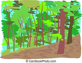 Forest - woodland