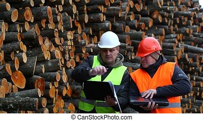 Forest workers near stacks of logs episode 3