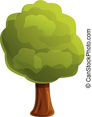 Forest young tree icon, cartoon style