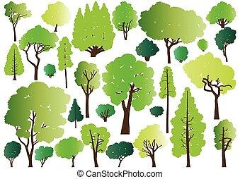 foresta, albero, silhouette