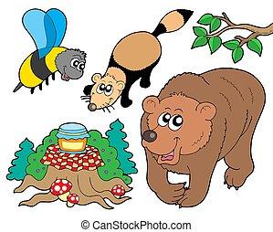 foresta, animali, collezione, 2