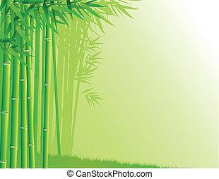 foresta bambù, fondo