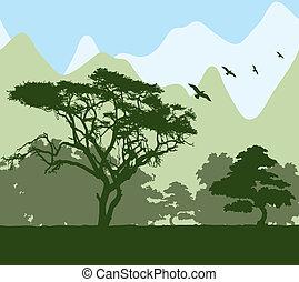 foresta, e, montagne