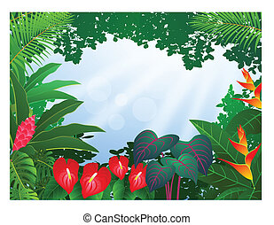 foresta, fondo, tropicale