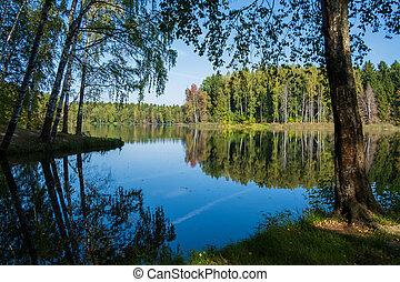 foresta, lakeside
