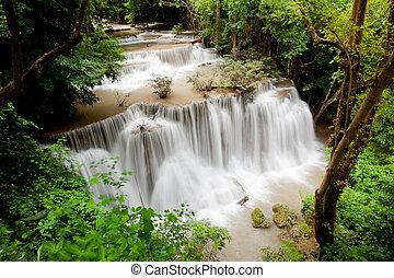 foresta pioggia tropicale, cascata