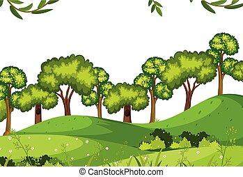 foresta, sagoma, natura