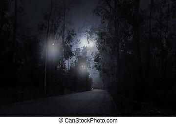 foresta, strada, in, uno, luna piena, notte