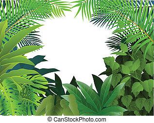 foresta tropicale, fondo