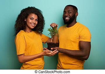 forestation, エコロジー, 木。, 恋人, 保護しなさい, 概念, 小さい, 保存, 幸せ