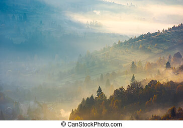 forested hills in rising autumn fog. amazing scenery in...