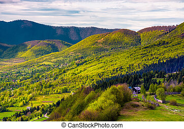 forested hills of Carpathian mountains in spring. lovely...
