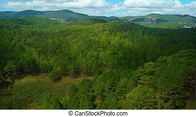 Forested Hillside in Vietnam on a Partly Coudy Day. Video -...