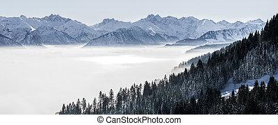 forested, pendio montagna, e, catena montuosa, in, basso, dire bugie, valle, nebbia, con, silhouette, di, sempreverde, conifere, ha celato, in, mist., scenico, nevoso, paesaggio inverno, in, alpi, baviera, germany.