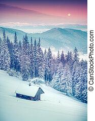 forester's, capanna, coperto, con, neve