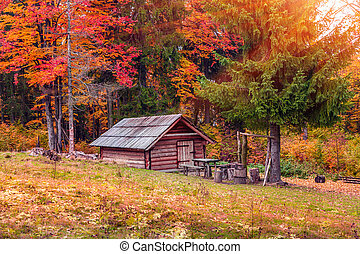 Forester's hut in the middle of autumn forest