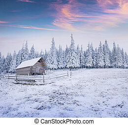 Forester's hut in the snowy mountain forest