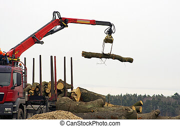 Forestry - A truck with a crane arm will load logs....