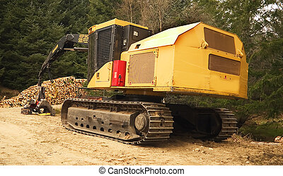 Forestry Machinery - A large tree mover caterpillar crane in...
