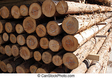 Pile of logs at a forestry plant