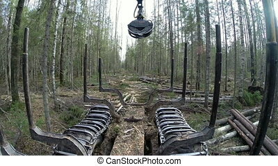 Forestry. View from side of logger at loading logs, close-up